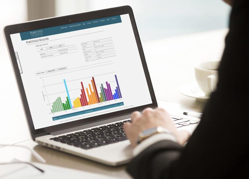 cash management spreadsheet on laptop